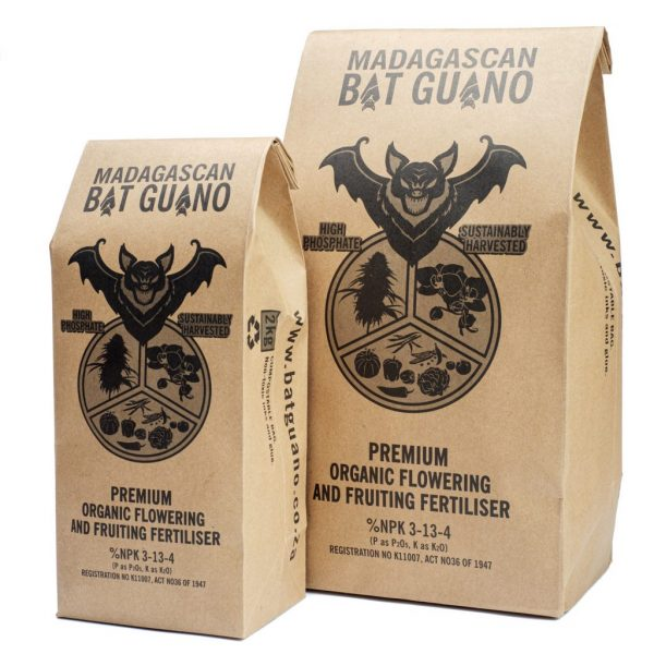 Madagascan Bat Guano